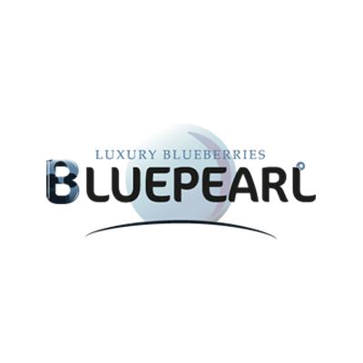 BLUEPEARL-LUXURY-400X400